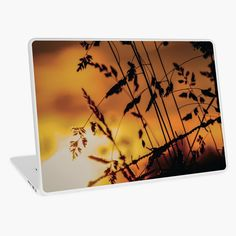 Bring the calming, warm morning sun with you with this georgous Laptop Skin. Shine all day! Skin Shine, Morning Sun, Canvas Prints, Art Prints, Laptop Skin, Other Accessories, Cotton Tote Bags, Calming, Chiffon Tops