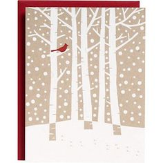 Cardinal in Birch Tree Foil A2 Holiday Cards