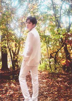 EXO PLANET #4 - The EℓyXiOn Goods PostBook #엑소 #EXO #XIUMIN