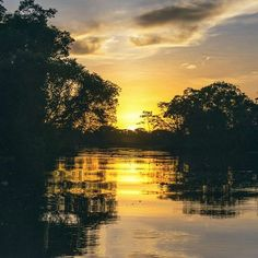Despierta, mira que ya amaneció, ya los pajaritos cantan, la luna ya se metió 🎵🎶... Porque con amaneceres como el que se experimentan en el Amazonas cómo no vamos a despertar cantando... (📷: Shutterstock) #Iquitos #selva #vamos #vamosdeviaje #turismo #travel #instalove #instatravel #viajes #sun #cielo #amanecer