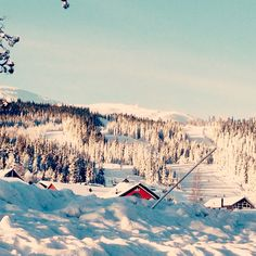 Trysil, Norway. Lots of snow ❄️