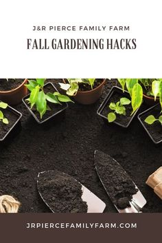 Just because the leaves are falling and the temperatures are plummeting, that doesn't mean your gardening chores are through! Here are the fall gardening chores you need to do now to prepare your garden for winter. #fallgardening #fallgardeningtips #gar