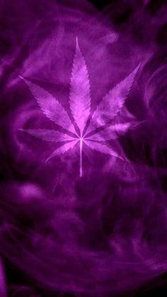 Weed Wallpaper for Googlphone weed weedwallpaper