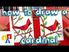 Learn how to draw a Cardinal in this free art lesson. Male and female cardinals sitting on pine branches can be quickly and easily drawn using this tutorial. Art For Kids Hub, Art Hub, Cardinal Drawing, Winter Drawings, Drawing Lessons For Kids, Drawing Tips, Directed Drawing, Art Lessons Elementary, Bird Drawings