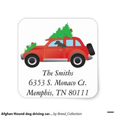 Afghan Hound dog driving car w/ Christmas tree Square Sticker ❤  Find more Breed Collection here…. ❤ BreedCollection.com ❤ TriPodDog.Etsy.com ❤ TriPodDogDesign.RedBubble.com ❤ http://www.zazzle.com/breed_collection