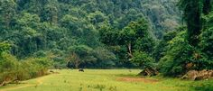 #Babelake: Ba Be National Park - Top 10 Trails For The Best Trekking in Vietnam