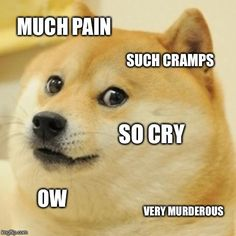 Period. Ow. Doge.