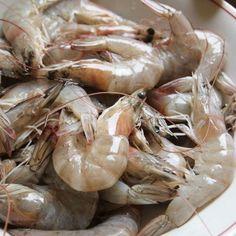Jak i jak długo gotować owoce morza   IleGotowac.pl Shrimp, Seafood, Meat, Sea Food, Beef