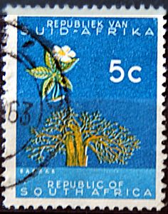 Republic of South Africa.  BAOBAB TREE.  Scott 273 A114, Issued 1961,  unwmrk, Perf. 14, 5c.