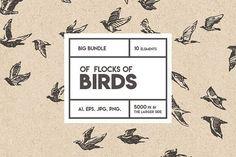Flocks of birds, sketch style by Bakani on @creativemarket