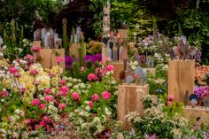 #Chelsea Flower Show 2014, Andy McIndoe, Floral Marquee, Hilliers Nursery, stand