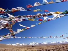 All the flags you see are Tibetan prayer flags and their purpose is to provide a safe passage for the travelers crossing that plain.