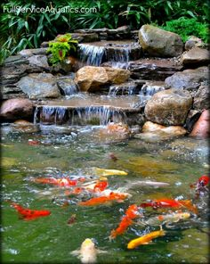 Amazing Fish Pond Ideas for Your Garden. Here we go, we give you some fish pond ideas. Has fish pond at home gives many advantages. From entertainment to eliminate boredom, beautify the look . Fish Pond Gardens, Water Gardens, Garden Pond Design, Landscape Design, Landscape Plans, Outdoor Ponds, Outdoor Fountains, Backyard Ponds, Pond Fountains
