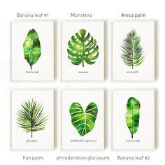 Monstera Print Palm Leaf Art Print Botanical Print Set