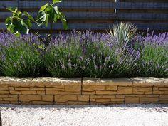 Mediterranean Garden, Green Garden, Garden Styles, Pathways, Garden Inspiration, New Homes, Home And Garden, Patio, Landscape