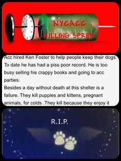 6/2/17 STOP THE SLAUGHTER NYCACC!! http://nycdogs.urgentpodr.org/category/gone-by-month/gone-dogs-2017-06/