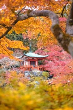Groove (Daigo-ji Temple during Autumn in Kyoto, Japan) by Korawee Ratchapakdee on Japanese Photography, Landscape Photography, Travel Photography, Photos Of The Week, Great Photos, Famous Architecture, Japan Travel, Autumn Leaves, Mother Nature