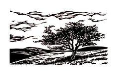 Landscape Prints, Landscape Art, Lino Art, Linoprint, Cute Images, Photo Illustration, Book Design, Printmaking, Welsh