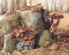 """MARJOLEIN BASTIN est une célèbre illustratrice Hollandaise Artiste renommée, dessinant magnifiquement la nature, elle travaille depuis 1974 pour l'hebdomadaire néerlandais """" libelle """"..."""