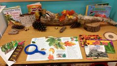 What Can Teachers Do To Get Ready for School? Science Center Preschool, Science Area, Fall Preschool, Stem Science, Science Centers, Learning Centers, Science Experiments, Pre K Activities, Autumn Activities
