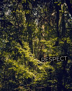 Why is it so difficult to gain respect in the world today? Natgeo Your Shot, Less Is More, Gain, Respect, Philosophy, Travel Photography, Explore, Thoughts, World