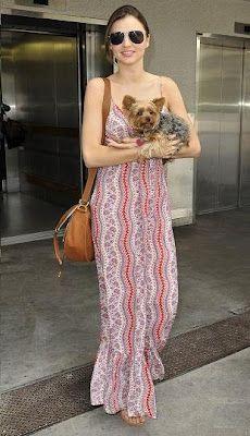 Things I already own:  ✔Long, flowy dress  ✔Aviators  ✔Saddle bag  ✔Cute dog ~ Thank you Miranda Kerr.