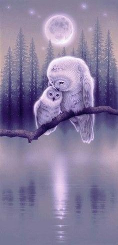 Wintery Scene of a Mother Owl and Her Baby Sitting on a Low Tree Branch., - Gemalte - Wintery Scene of a Mother Owl and Her Baby Sitting on a Low Tree Branch., Wintery Scene of a Mother Owl and Her Baby Sitting on a Low Tree Branch. Owl Photos, Owl Pictures, Nature Pictures, Owl Bird, Pet Birds, Owl Artwork, Owl Wallpaper, Beautiful Owl, Owl Crafts