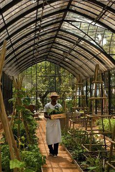Gardenista | Babylonstoren Greenhouse: An Idyllic Garden by Izabella Simmons