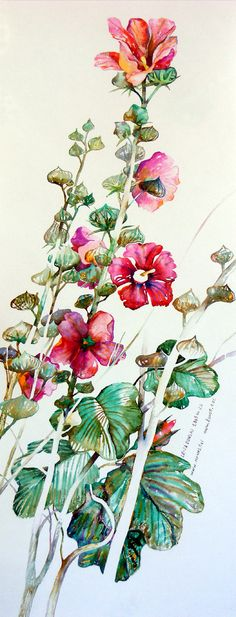 Hollyhocks watercolor