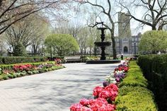 Fordham University Rose Hill - the memories are just awesome