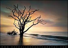 Dave Allen: Beach sunrise at Botany Bay Plantation on Edisto Island, SC.