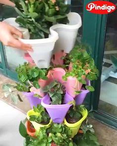 Garden Yard Ideas, Lawn And Garden, Garden Projects, Garden Pots, Vegetable Garden, Small Space Gardening, Garden Spaces, Orquideas Cymbidium, Apartment Balconies