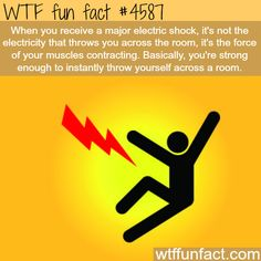 WHOA! ...The power of the human muscles - WTF fun facts. More facts are coming HERE. Weird & interesting facts ONLY