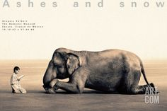 Boy Reading to Elephant, Mexico City Collectable Print by Gregory Colbert at Art.com