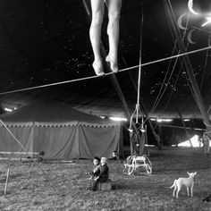 Photographs chronicling the lives lived behind the scenes at the Ringling Brothers circus extravaganza in the late 1940s.
