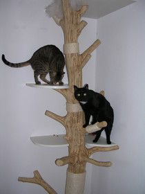 Cat tree diy (wish it was in English)