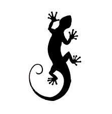 Image result for lizard silhouette