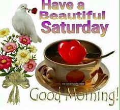 Have a beautiful Saturday Good Morning