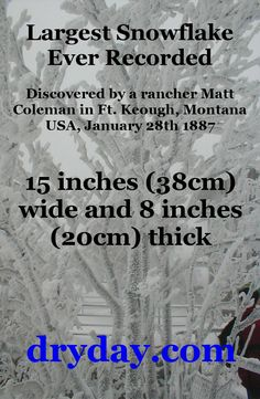 Largest Snowflake Ever Recorded