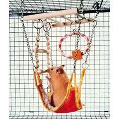 Hammock & Playbridge Gerbil or Hamster Cage Pet Toy: Amazon.co.uk: Pet Supplies