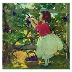 Jessie Willcox Smith Greeting Cards : Picking Grapes