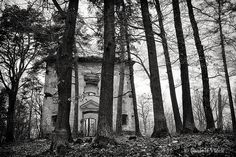 Abandoned Church / Forest