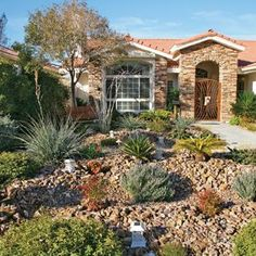 drought tolerant front yard landscaping ideas | ... turf lawns with hardy, drought-resistant plants and rock gardens