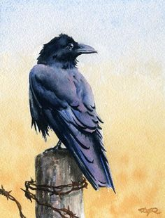 RAVEN Bird Wildlife Watercolor Signed Fine Art by k9artgallery