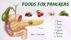List of 10 best foods for pancreas support you should know is a new article that suggests you 10 healthy foods for pancreas. Pancreatic Diet Recipes, Pancreas Health, Broccoli, Fruit For Diabetics, Beat Diabetes, Cure Diabetes Naturally, Anti Inflammatory Recipes, Liver Detox, Diabetes Treatment
