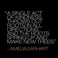 A single act of kindness throws out roots in all directions and the roots spring up make new trees.   -Amelia Earhart