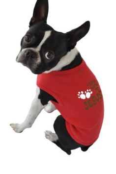 Amazon.com: Ruff Ruff and Meow Dog Tank Top, Bow Wow to Jesus, Red, Small: Pet Supplies