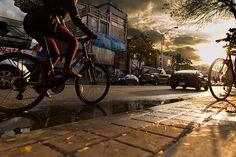 Sunshadow: A woman bikes into the sunset on Bloor near Dovercourt in Toronto.