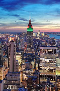 New York City Manhattan skyline aerial view NYC Manhattan Skyline, Nyc Skyline, Oh The Places You'll Go, Places To Travel, Places To Visit, Empire State Building, Nature Architecture, Ville New York, Voyage New York