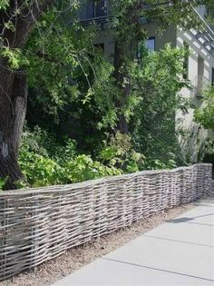 12- Continuous willow border fence with rolled top-Willow Farm located in Pescadero, CA: YES!